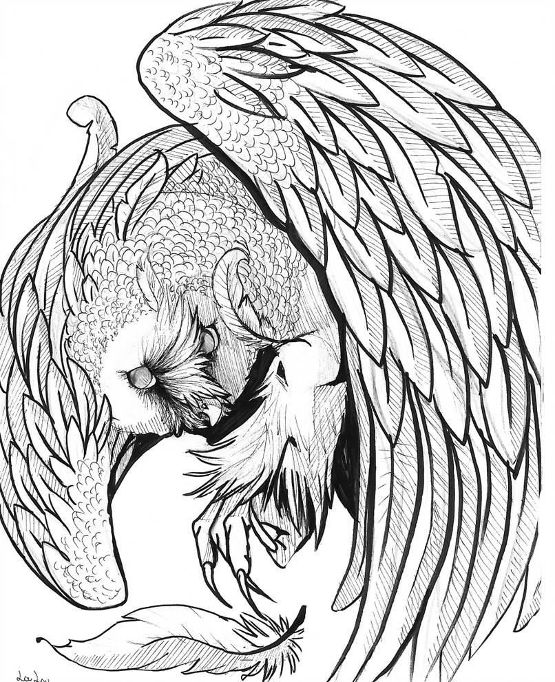 806x991 Pen And Ink Owl