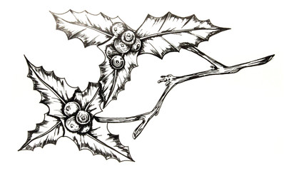 412x240 Hand Drawn Owl On A Branch