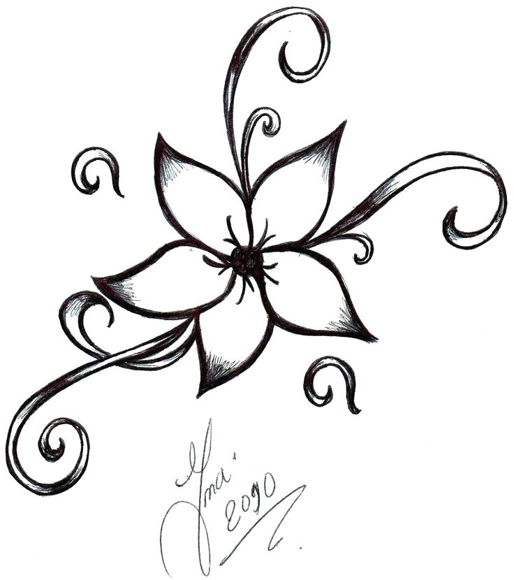 736x830 Images Of Flowers To Draw Pictures Easy Flowers Drawings Step