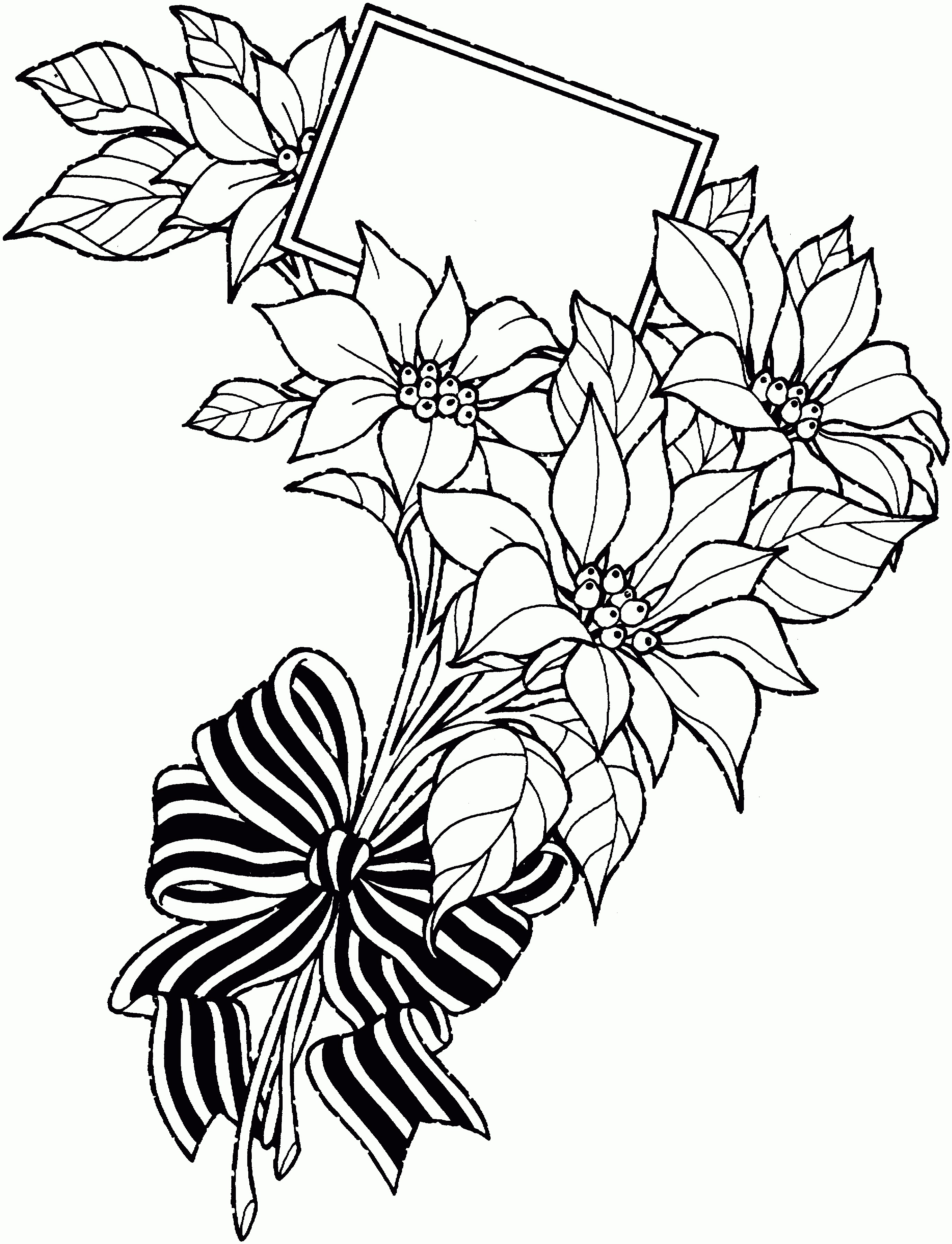 2749x3592 flowers drawing fresh pencil drawing flower bouquet bouquet