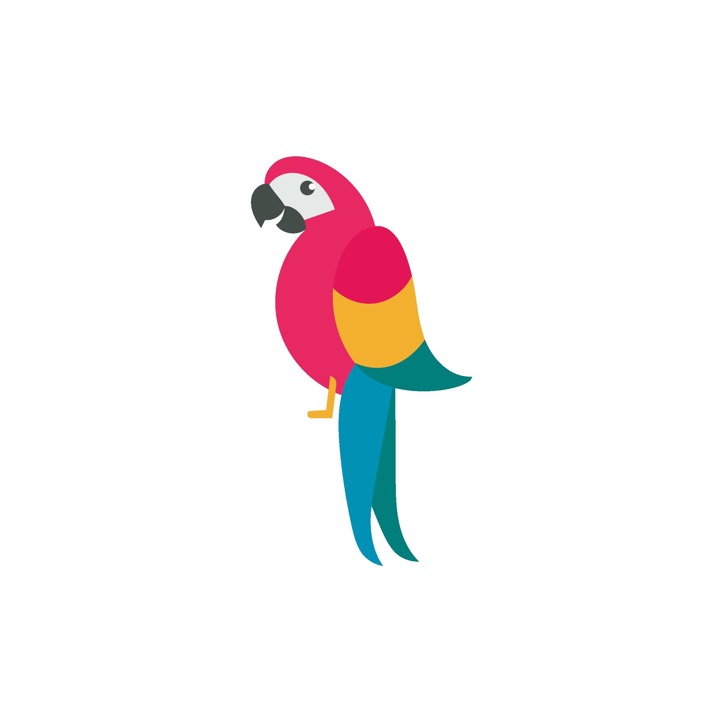 2362x2362 parrot drawing fresh draw birds parrot drawing clip art parrot