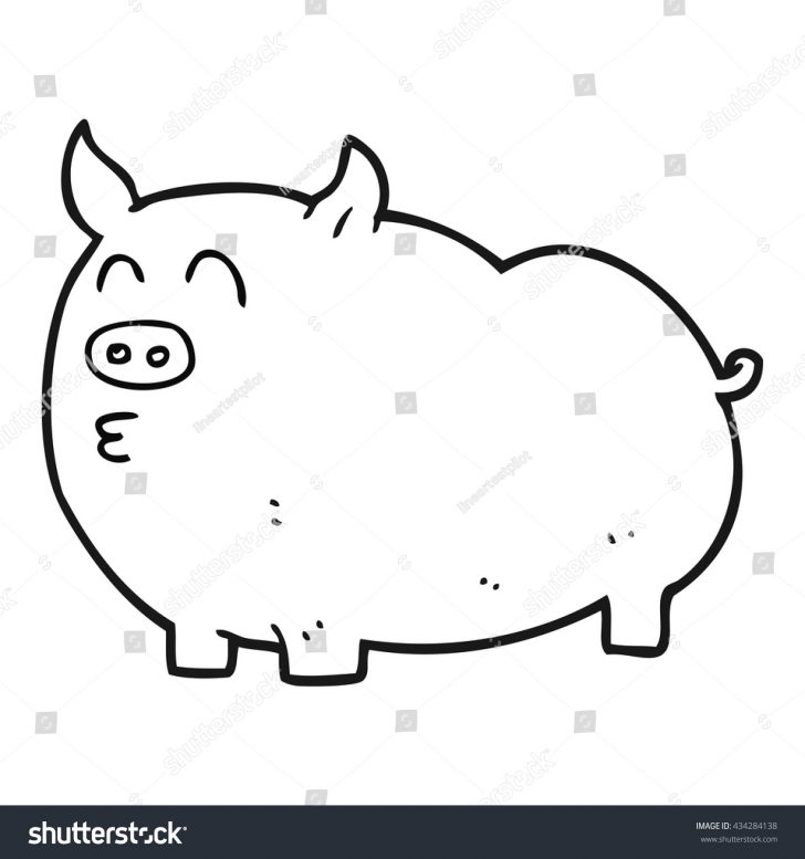 728x777 Baby Pig Cartoon Drawing Head Peppa Step Line Carmi Chaelinn