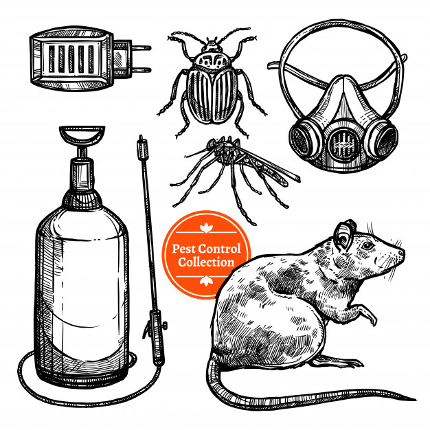 626x626 Hand Drawn Sketch Pest Control Vector Free Download