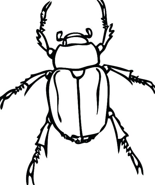 510x609 How To Draw A Beetle Author Drawing Beetlejuice Draw A Door