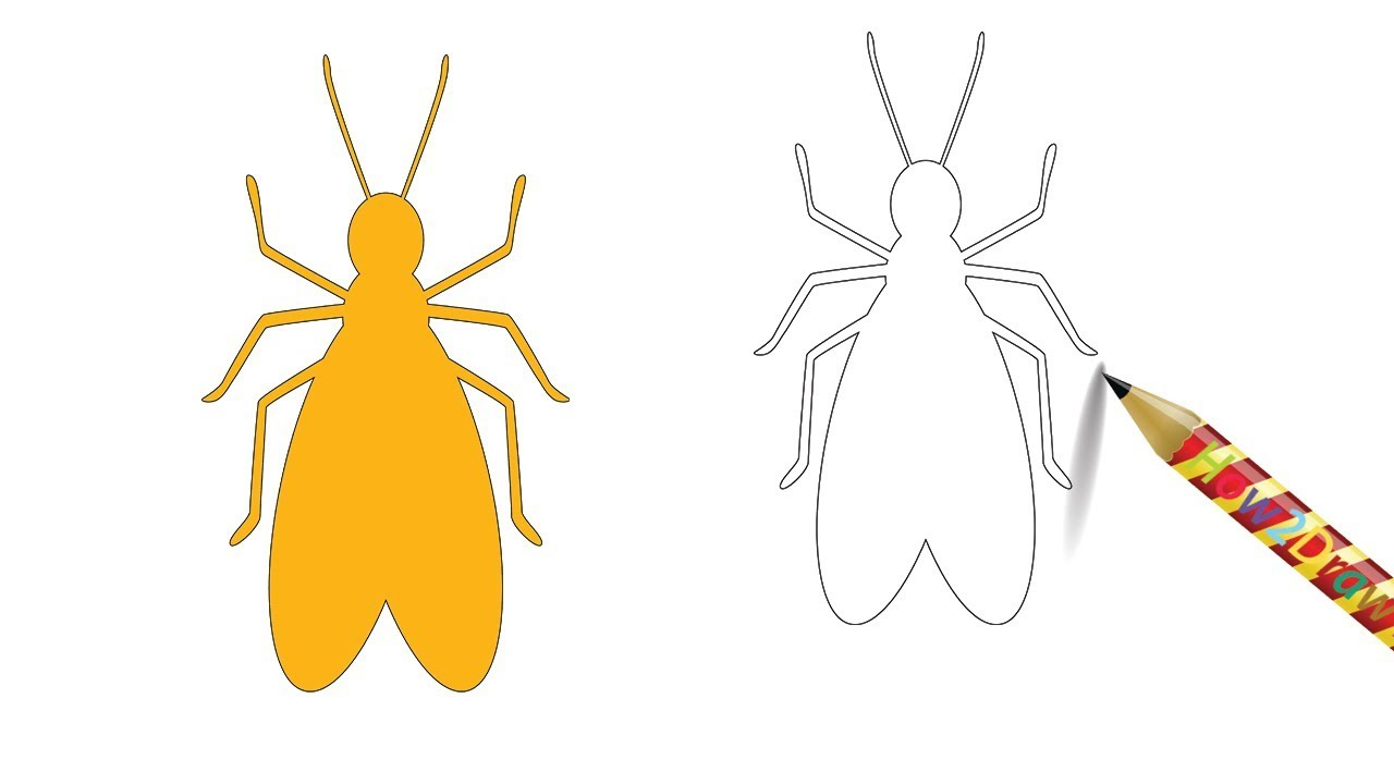 1280x720 How To Draw A Termite Insect Easy Drawing