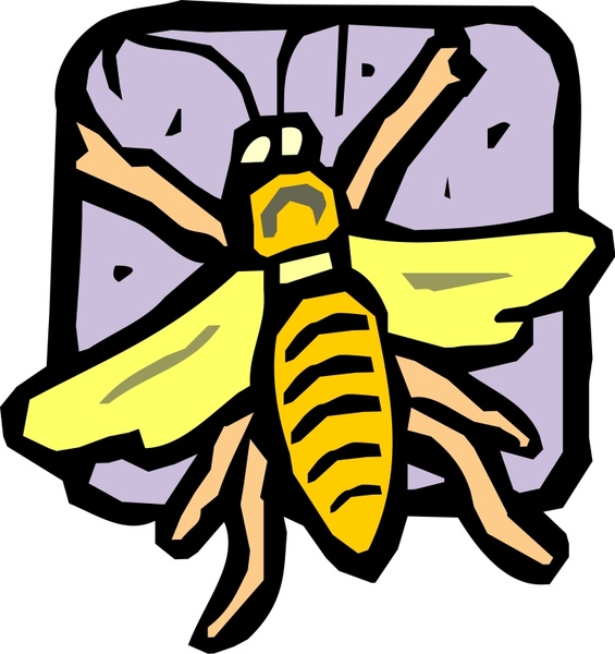 565x600 Insect Free Vector In Open Office Drawing