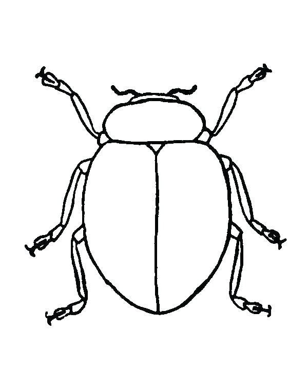 600x756 Simple Bug Drawings Pill Ladybug Simple Drawings