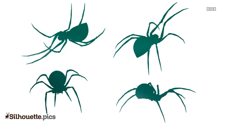934x534 Spider Drawing Clipart Silhouette Pics