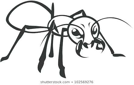 441x280 Ant Line Drawing