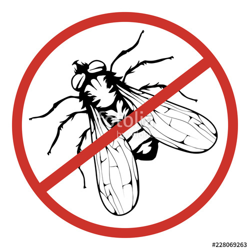 500x500 Fly Logo, Stop The Fly, Insect Pest, Hand Drawn Sketch Of Fly