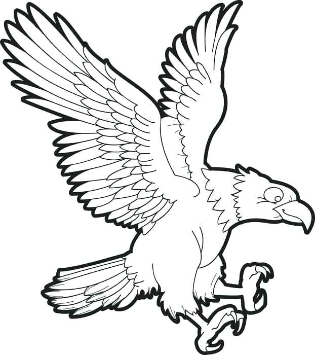 622x700 Eagle Printable Coloring Pages Eagle Printable Coloring Pages