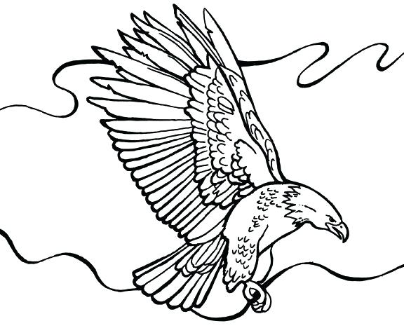 576x468 Eagle Printable Coloring Pages Bald Eagle Coloring