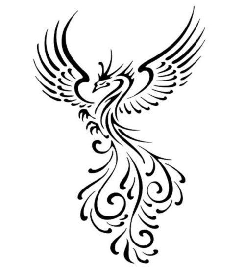 500x550 Phoenix Cover Up Tattoos Silhoutte Ideas And Designs
