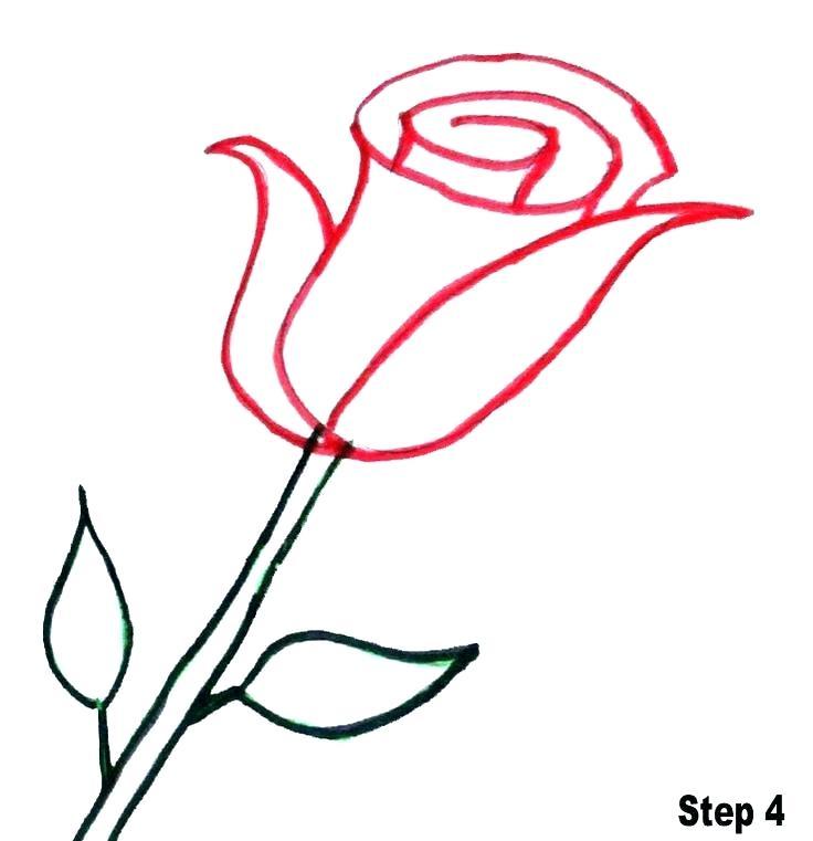 736x761 roses drawn roses drawing phone case roses drawings