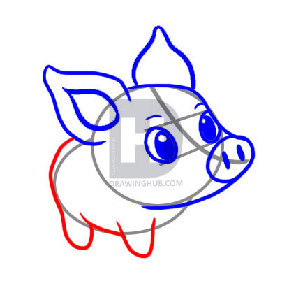424x422 How To Draw A Simple Pig, Step