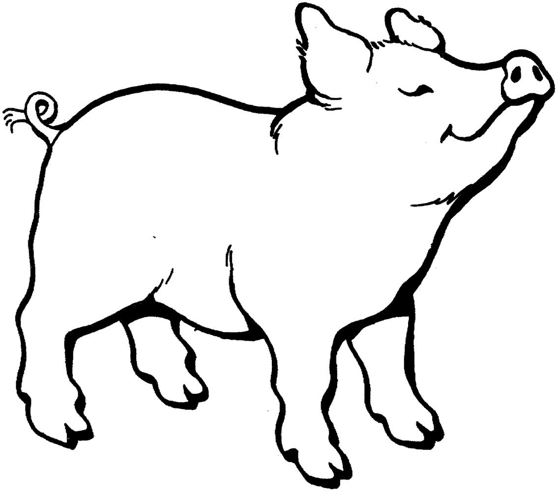 1133x999 Piggy Drawing Line For Free Download