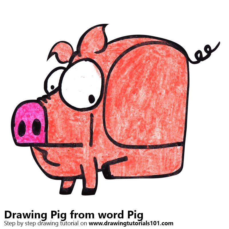 800x800 Learn How To Draw A Pig From Word Pig