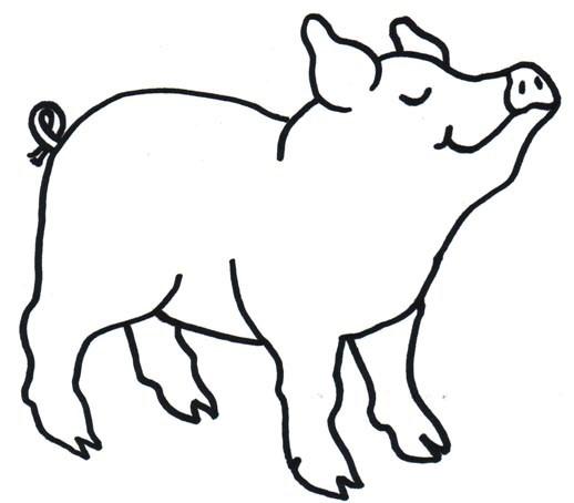 518x454 Pig Drawing Clipart Clipart Portal
