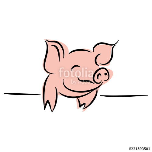 500x500 Drawing Of Cute Pig Vector Illustration Simple Concept Zodiac