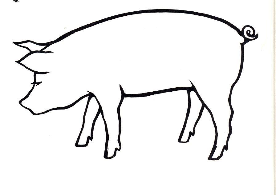 896x634 Pig Drawings Animals Pig Gilt Line Art Art Line Art, Art