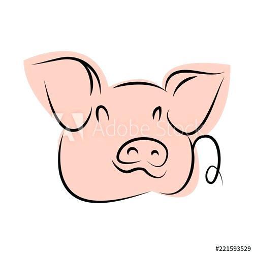 500x500 Cute Pig Drawings Piggy Drawing Pig Cute Pig Drawings Step