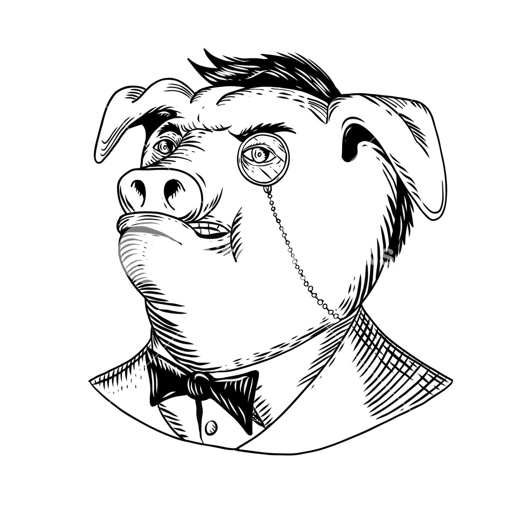 1000x1000 Drawing Sketch Style Illustration Of A Noble Aristocratic Pig