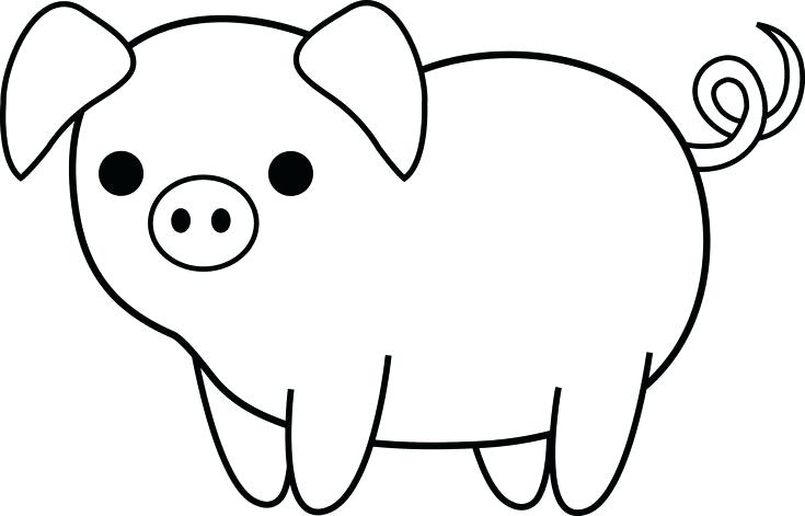 Pig Drawing For Kids