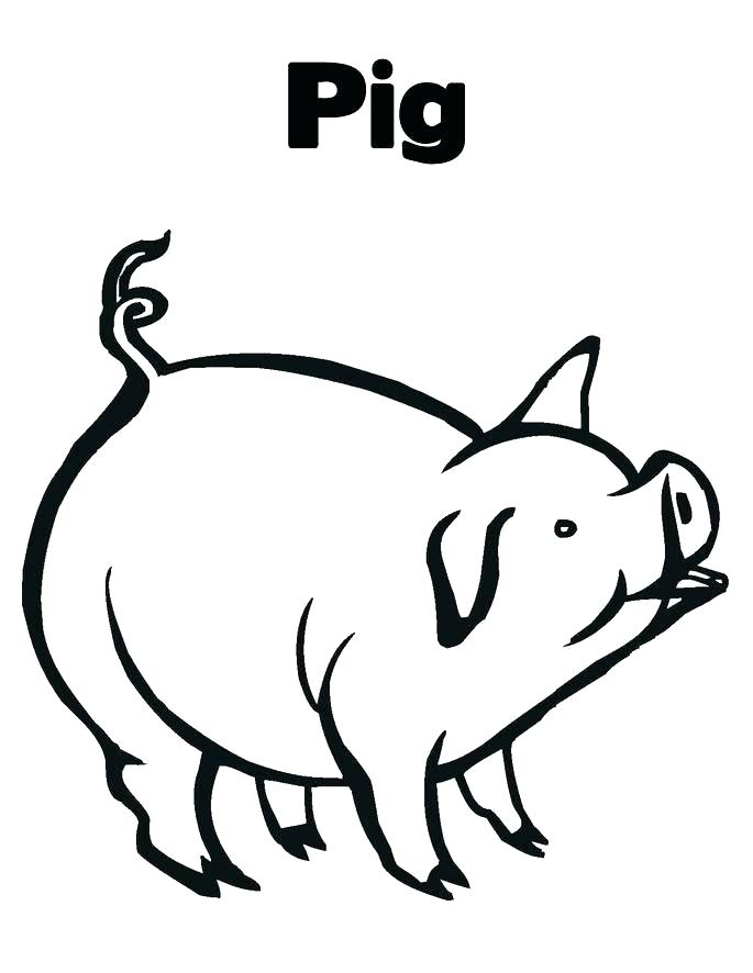685x886 Printable Peppa Pig Coloring Pages Free Printable Pig Colouring