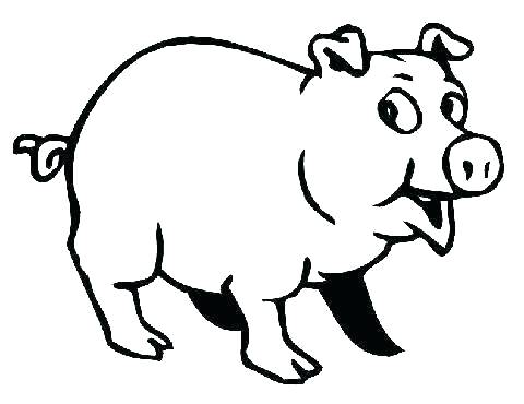 480x370 Easy Pig Drawing
