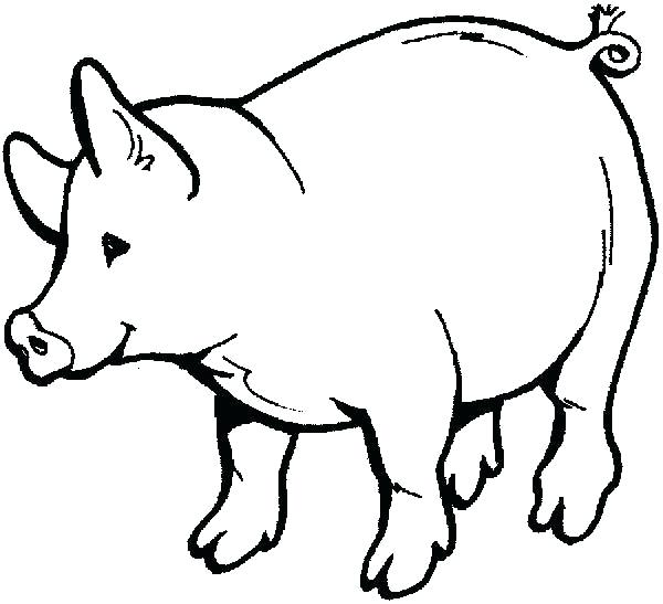 600x547 Drawings For Kids Pig Drawings For Kids Coloring