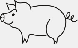 260x160 Download American Yorkshire Pig Drawing Clipart Large White Pig
