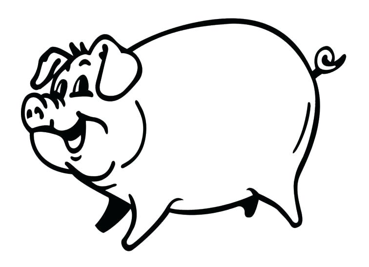 756x547 Baby Pig Drawing Piggy Drawing Baby Zoo Animal Smiling Pig
