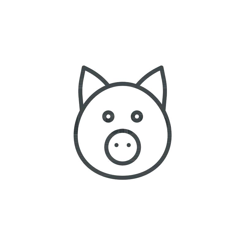800x800 How To Draw A Pigs Head