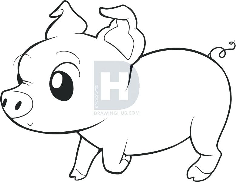 779x604 Easy To Draw Pigs Tags Cute Pig Drawing How To Draw A Bear Drawing
