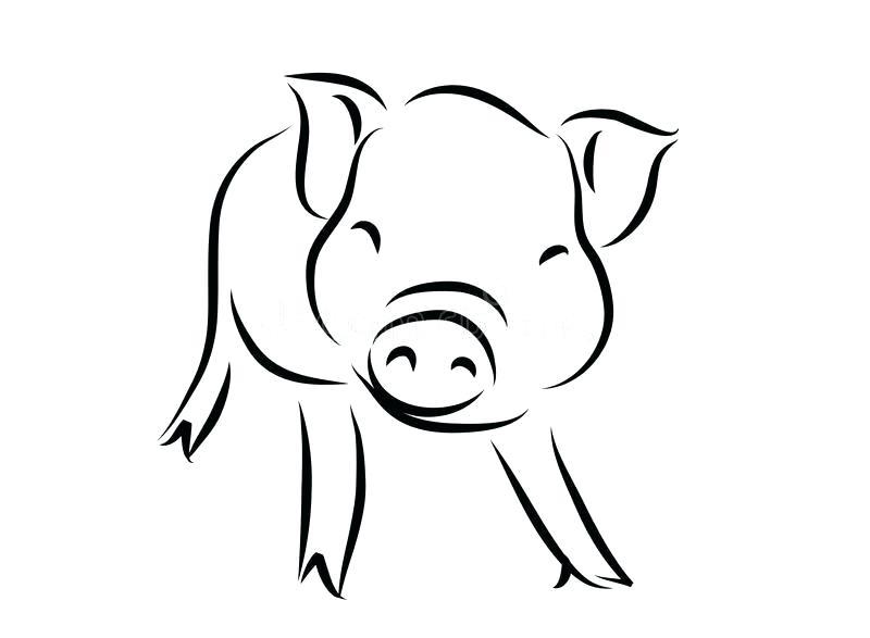 800x587 Outline Of A Pig Outline Of A Happy Smiling Pig Outline Pig Face