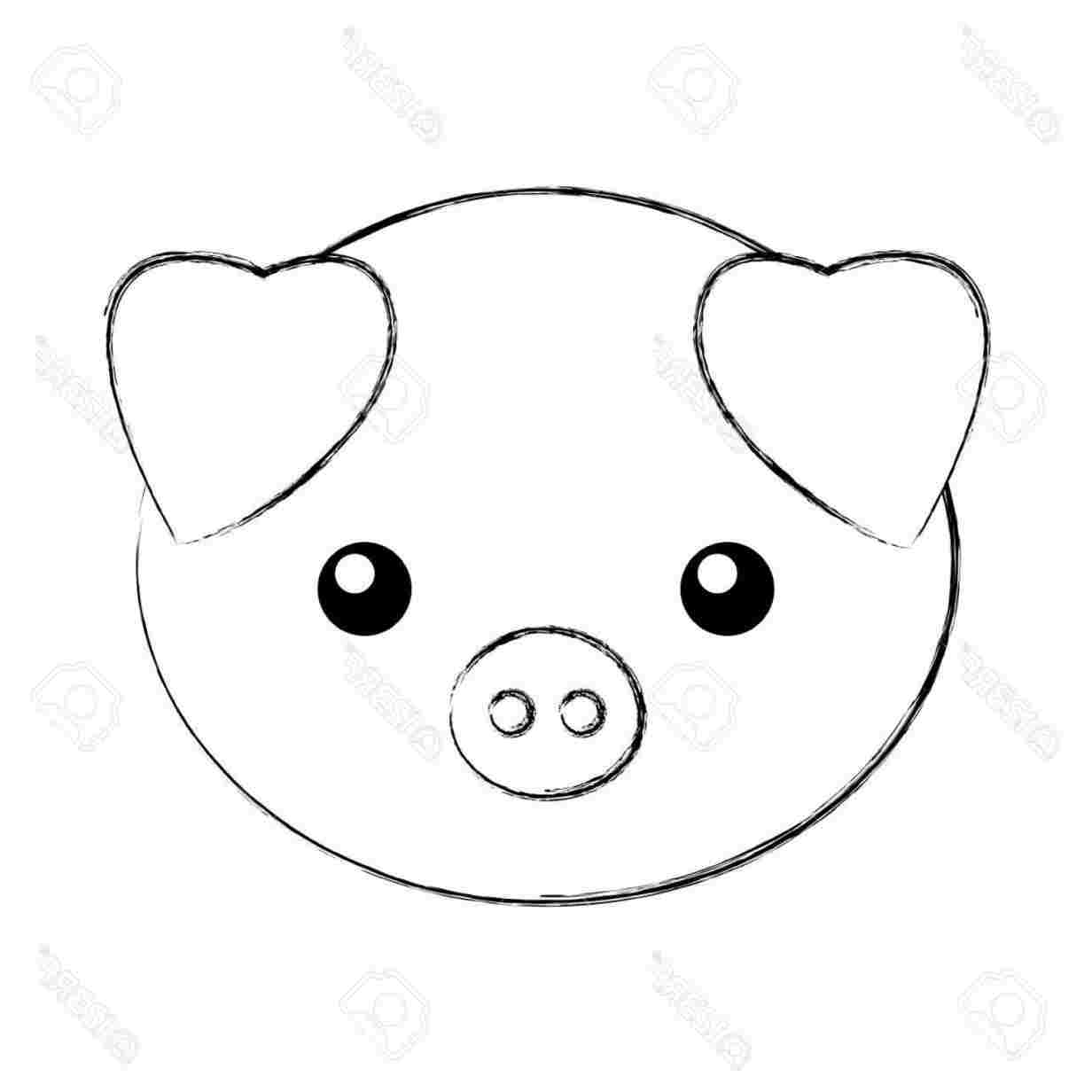 Pig Face Drawing Free Download Best Pig Face Drawing On Clipartmag Com