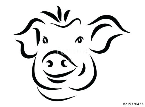 500x367 Simple Pig Drawing