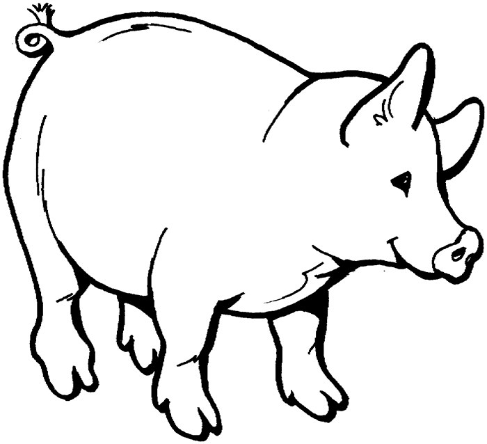 700x638 Huge Collection Of 'pig Outline Drawing' Download More Than