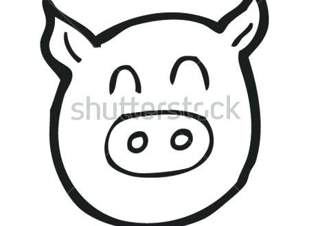 450x329 pig face drawing pig face vector cartoon stock guinea pig face