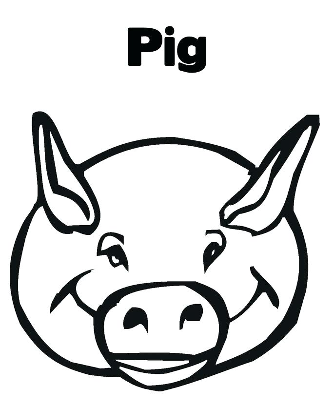 685x833 Pig Head Drawing Pig Head Line Art Illustration How To Draw A Pigs