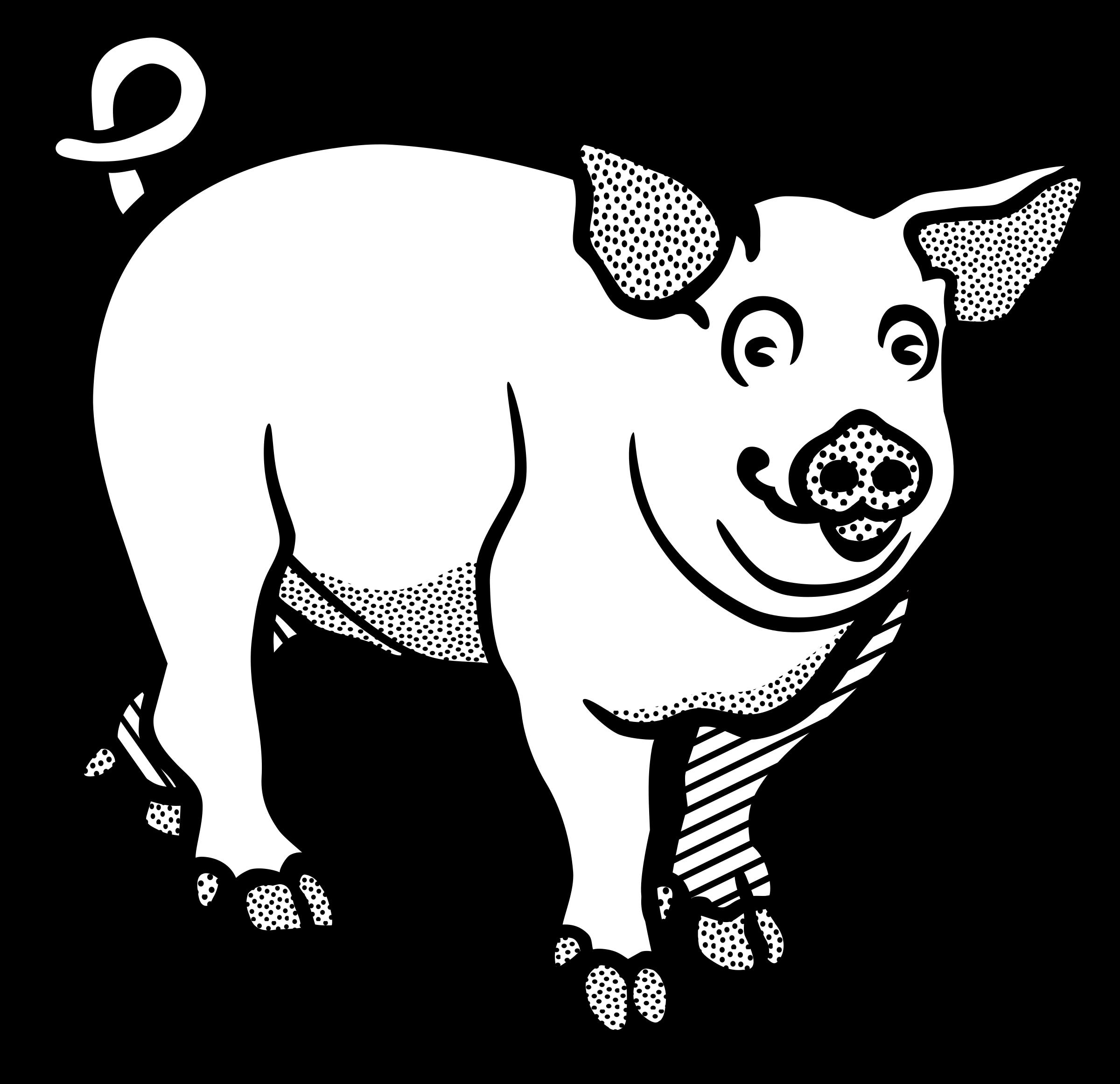 2400x2323 Pig Line Art Image Group
