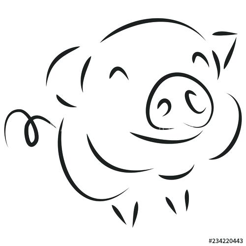 500x500 Cute Pig Drawings How To Draw A Simple Pig Step Cute Piglet