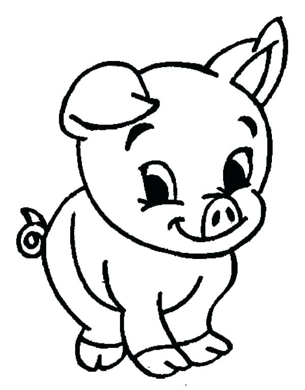 600x768 Baby Pig Drawing Baby Pig Coloring Pages Draw A Cartoon Pig