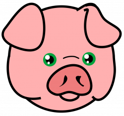 250x233 Pork Drawing Nose, Picture