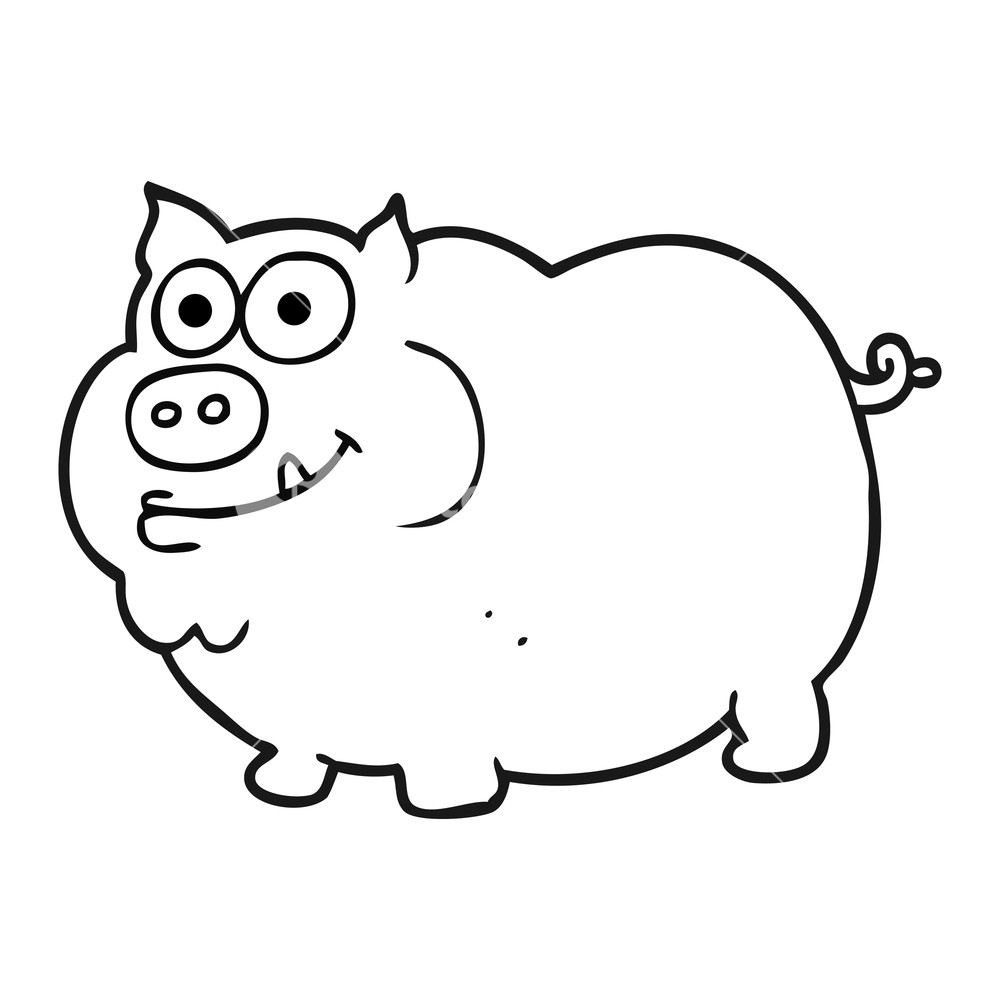 1000x1000 Freehand Drawn Black And White Cartoon Pig Royalty Free Stock