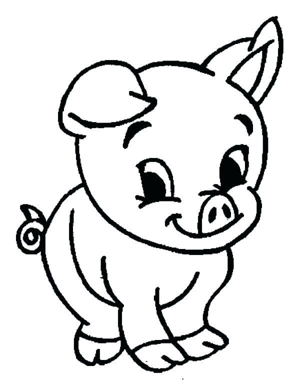 600x768 pig outlines guinea pig coloring pages guinea pig coloring pages