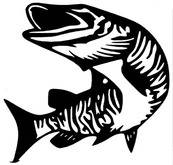 346x330 Northern Pike Clipart Muskie Fish