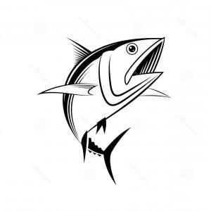 300x300 Photostock Vector Draw Tuna Fish Vector Sohadacouri