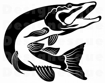 340x270 Pike Fish Etsy