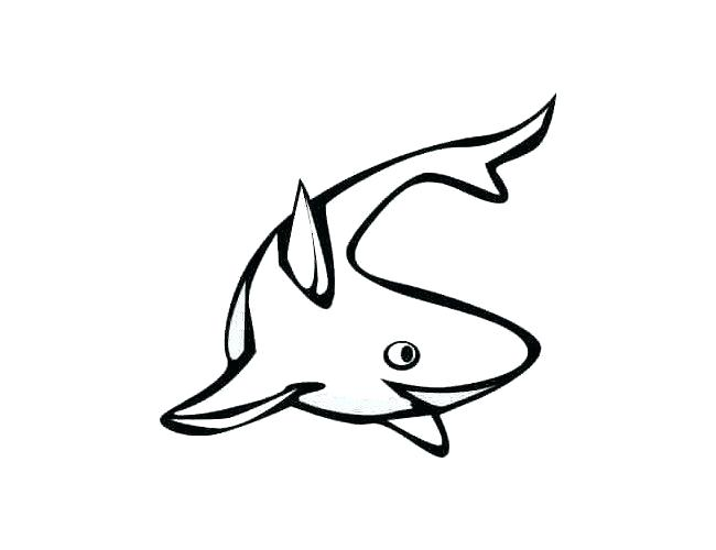 650x500 Small Fish Drawing Big And Small Fish Drawing Easy Draw A Fish